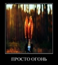 Персональный фотоальбом Леночки Игнатовой