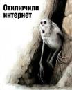 Владимир Тихомиров фотография #35