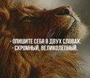 Фотоальбом Александра Васильева