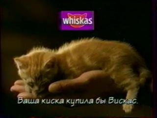 () Реклама и заставка (ОРТ, ) Whiskas, Lenor