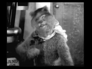 []Психоделика 1914 год Кот-мистификатор и Мышь-эпилептик ( 25 кадр ).mp4