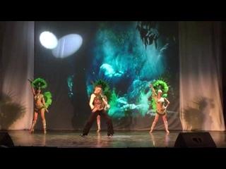 """Шоу с перьями. Бразильский карнавал. Африка. """"Африканская охота"""". Шоу-балет """"Силуэт""""."""