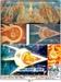 РАСШИФРОВКА ДРЕВНЕЙ ТАЙНОПИСИ - КРАХ ОФИЦИАЛЬНОЙ ИСТОРИИ. ЧУДИНОВ В.А., image #8