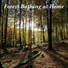 Nature sounds vidobia