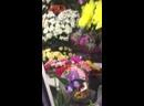 Букет из фрезий и просто чудесные цветы