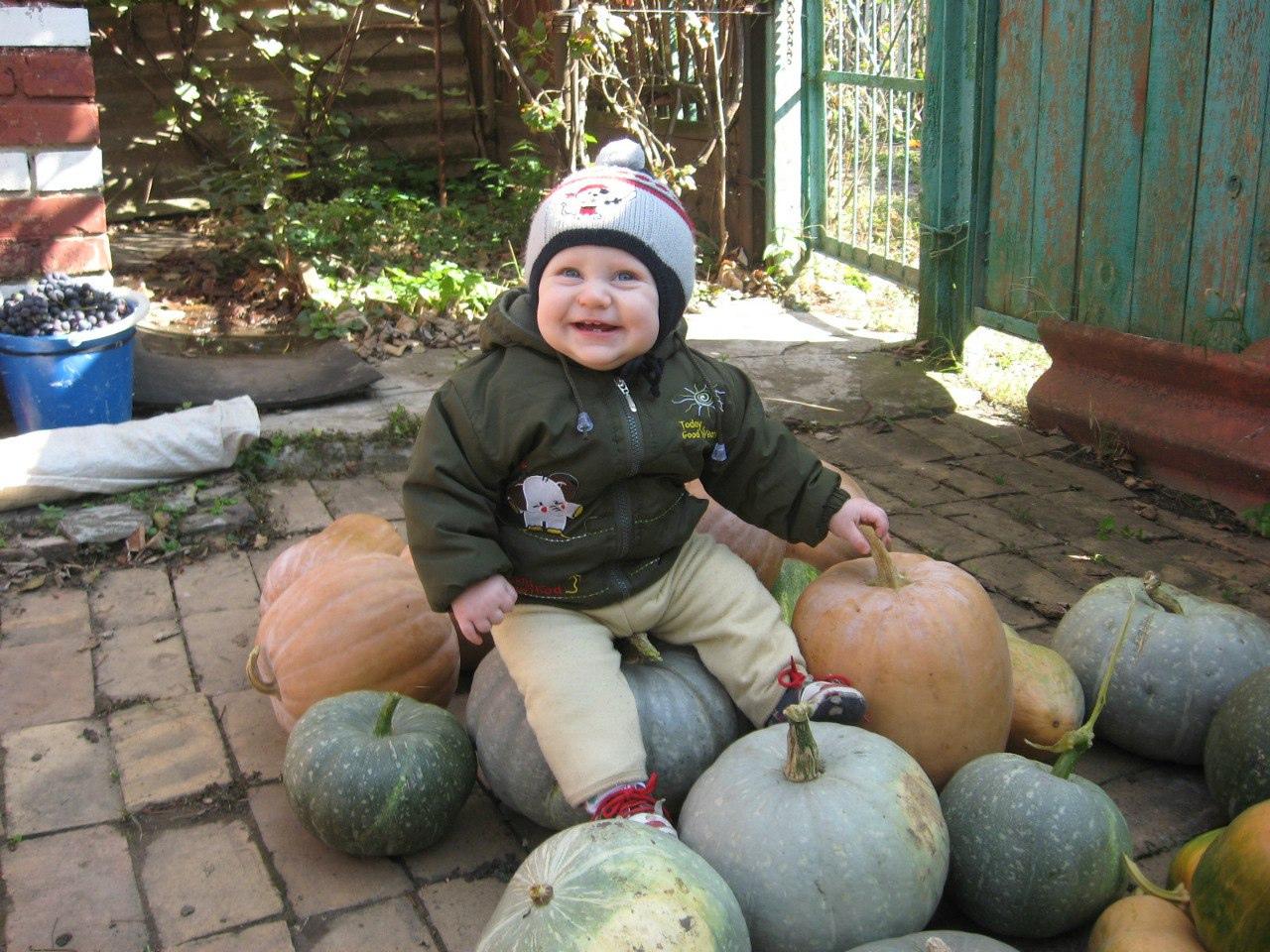 Сергей Столяренко, Армавир - фото №13