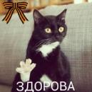 Фотоальбом Владимира Муравьева