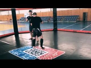 Oleg Laptevtan video