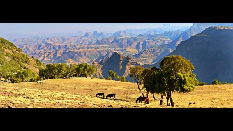 В дебрях Африки Эфиопия