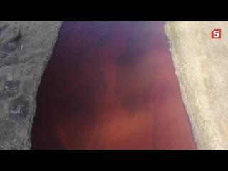 Росприроднадзор назвал сумму ущерба экологии от разлива топлива в Норильске