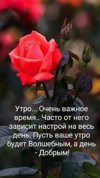 Шабельникова Наталья