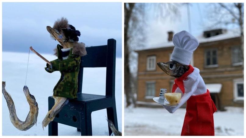 «Ей любой наряд подходит»: северодвинка сделала забавные поделки из мойвы