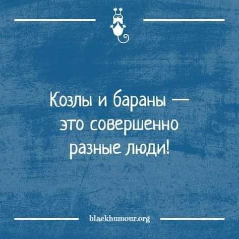 QqMcdT2jqjA.jpg