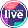 Пушкино LIVE