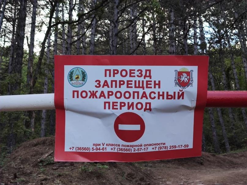 В Крыму на три недели продлили запрет на посещение лесов
