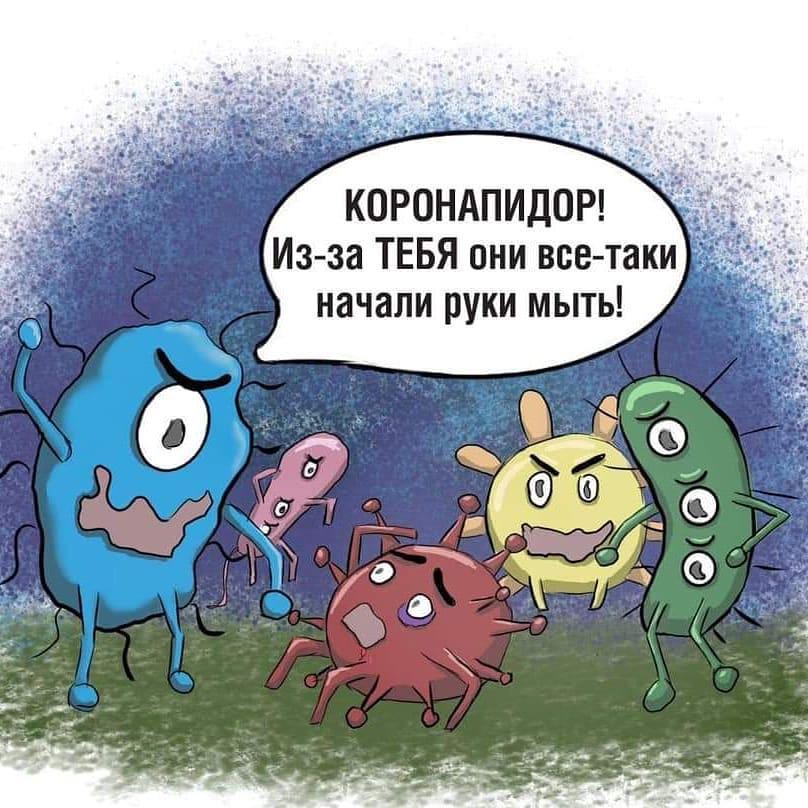 Секта СВИДЕТЕЛЕЙ КОРОНАВИРУСА 68895