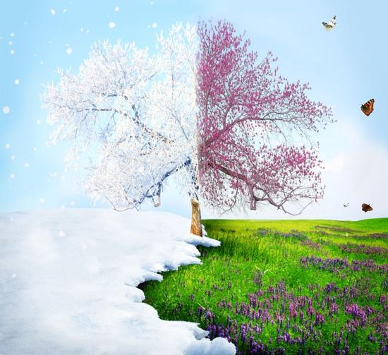 Если на Сретенье будет мороз…, изображение №2
