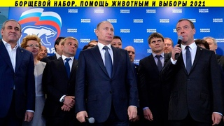 Путинизм головного мозга и ЕдинаяЖуликовИворов: выборы 2021