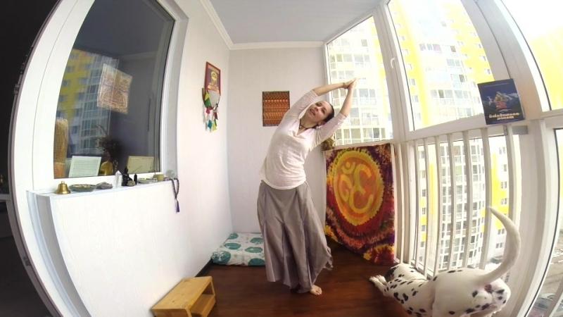 Йога танец КАОШИКИ КАУШИКИ KAOSHIKI Включай и повторяй 10 мин