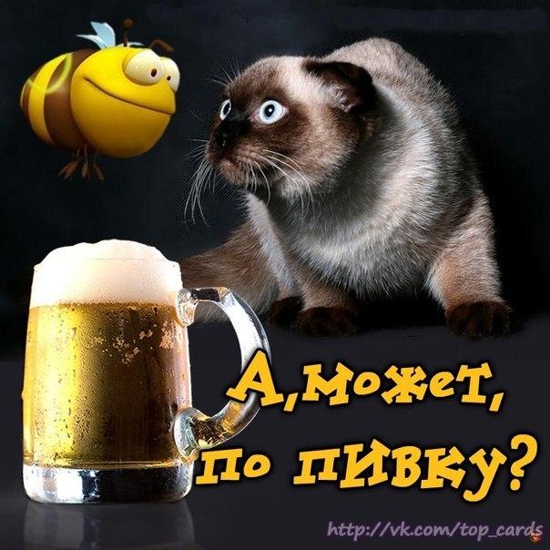 приглашение на пиво фото если еще