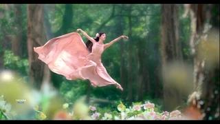 Day of Dream - Edelis (New Album) Amazing New Age Music