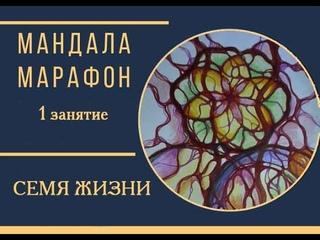 #Сакральная геометрия-Цветок жизни-Исполнение желаний-Семя жизни #Нейрографика с #Татьяной_Алпатовой