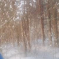 Фотография Эммы Гильвановой ВКонтакте