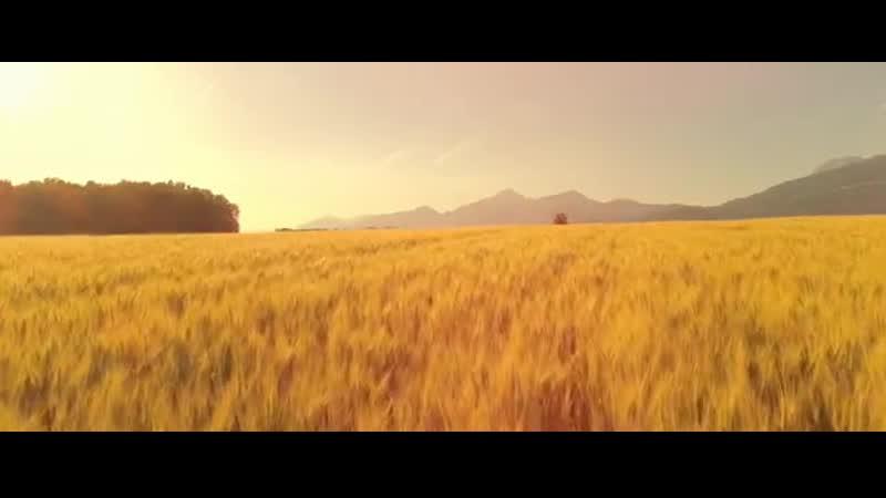 4K UHD FIELDS Relax and Unwind to Wonderful Scenery of Fields Meditation a
