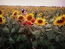 Фотоальбом Натальи Еременко