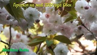 Гороскоп на май 2021 года Овен #MiroSlava_Kalita #гороскопы #овен_май_2021